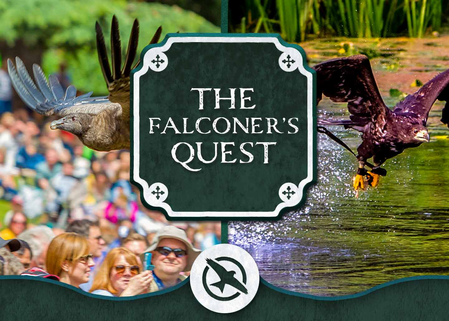 The Falconer's Quest at Warwick Castle